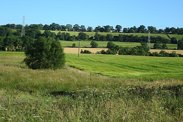 Fields near Newhouse