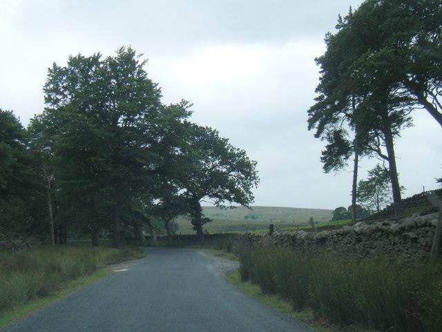 Wyre Way near Sawpit Wood