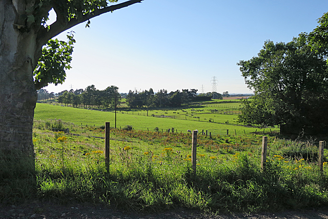 Small Fields at Humbie