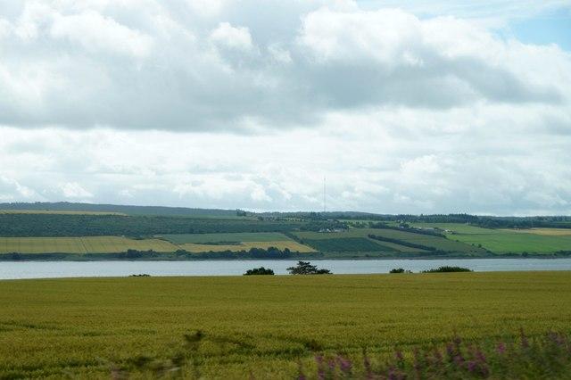 Fields at Drummond, near Evanton