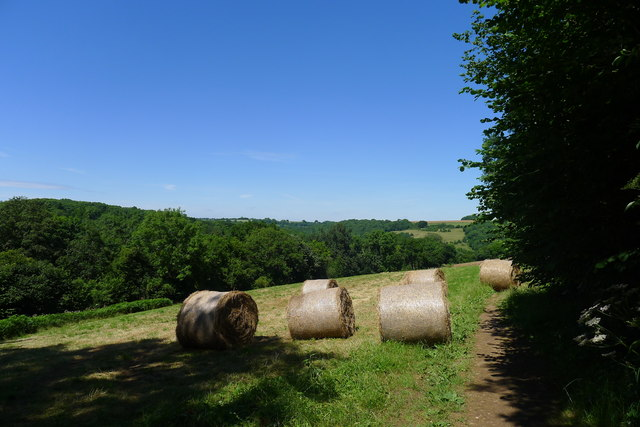 Hat bales in a field next to Claypit Wood