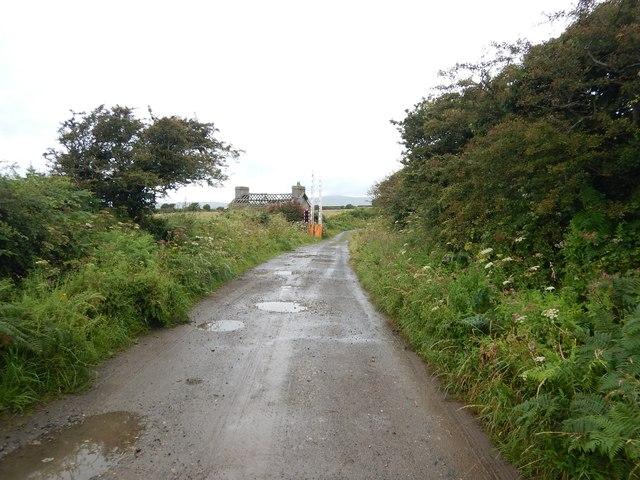 Farm Track at Railway Crossing