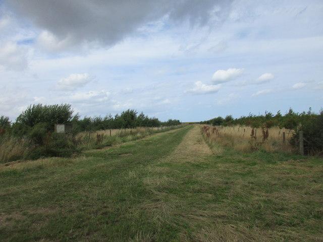 Bridleway to East Newton