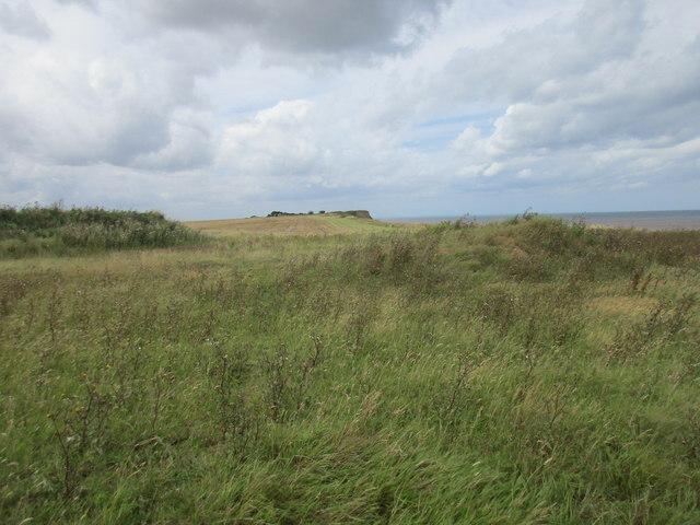 Cliff top view towards Ringborough Farm