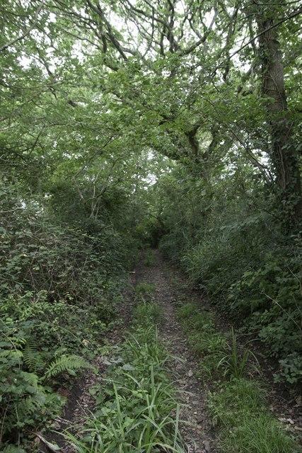 Stoke Mill Lane