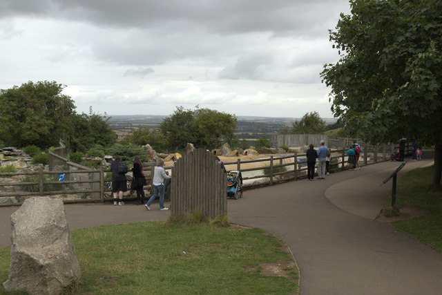 Penguin Enclosure, Whipsnade Zoo