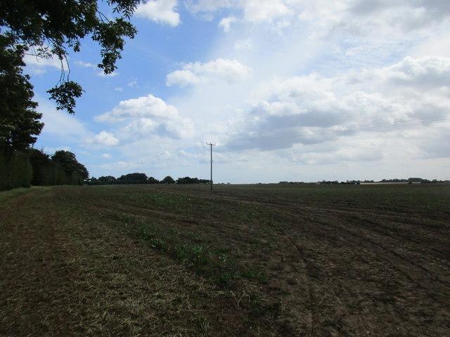 Stubble field near Fitling Grange