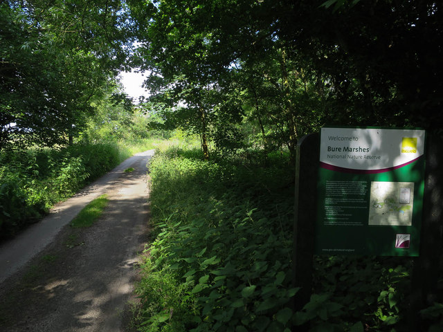 Ferry Road into Bure Marshes