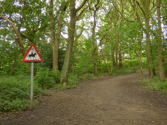 Horse warning in Bramley Fall woods