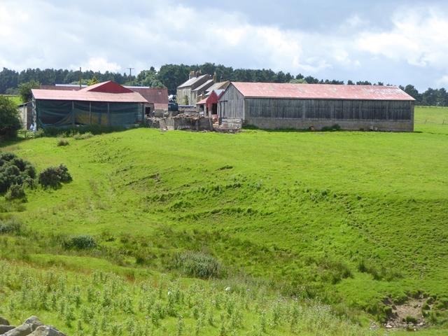 Steel Hall Farm