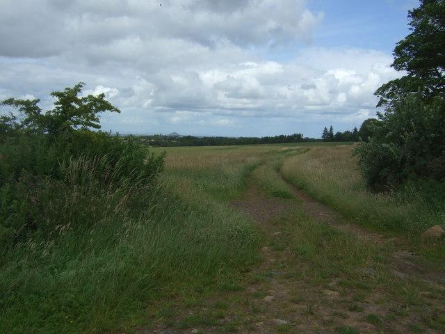 Field entrance beside Townhead Wood