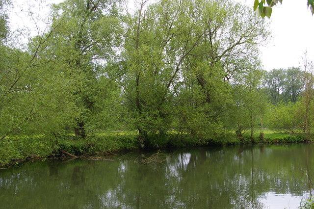 River Cherwell opposite University Parks, Oxford