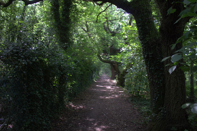 Cycle route 21 approaching Redhill