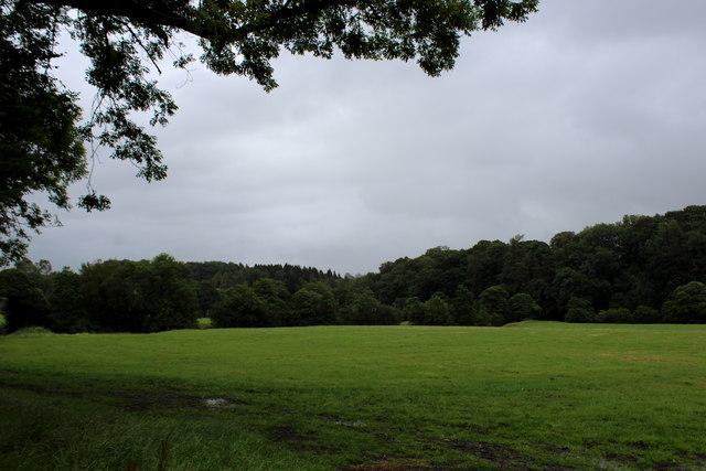 Pasture beside the River Hodder