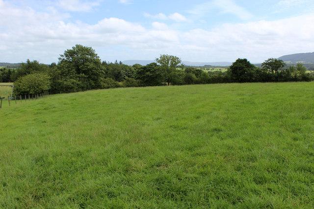 Pasture beside Knot Barn