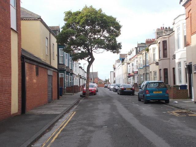 Westbourne Grove - Millbank Terrace