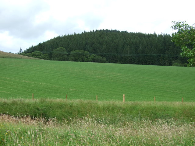 Grassland towards Cockburn Dean