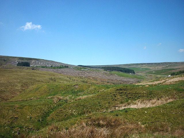 Footpath above Killhope Burn