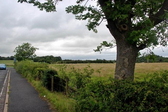Farmland east of Knockentiber