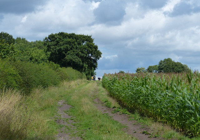 Track and footpath next to the Lubbesthorpe Bridle Road