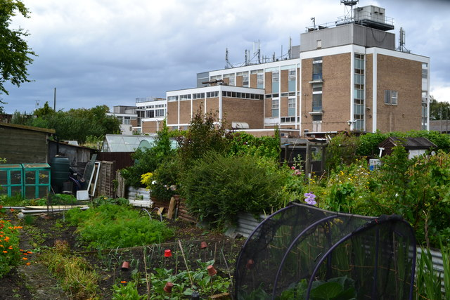 Allotments and telephone exchange