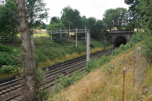 Railway through Shugborough Park