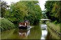 SJ6048 : Llangollen Canal near Wrenbury Heath in Cheshire by Roger  Kidd