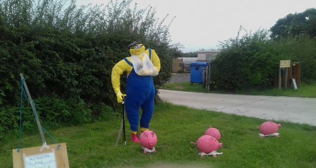 Minion pig farmer at Anderby village festival