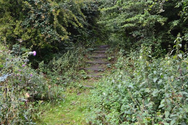 Steps in footpath behind Tesco Hinckley Depot