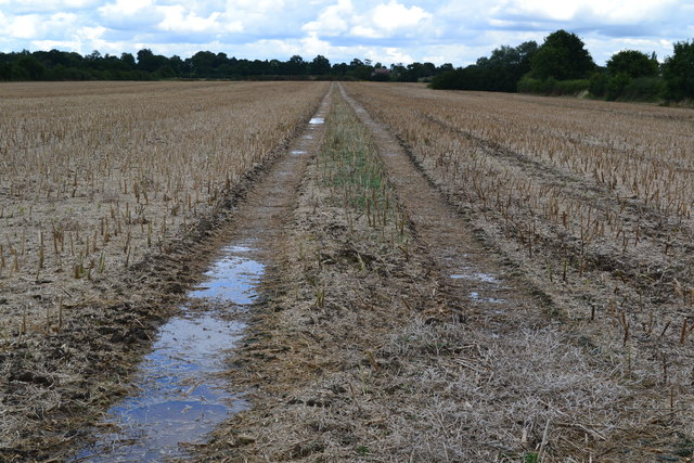 Stubble field on the outskirts of Hinckley