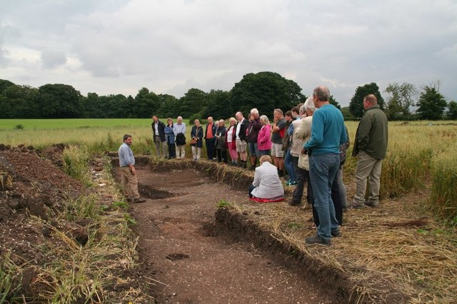 Open day in a Saxon oat field in Little Carlton (3)
