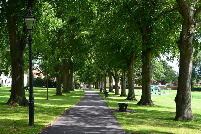 Path between avenue of trees in Queen's Park