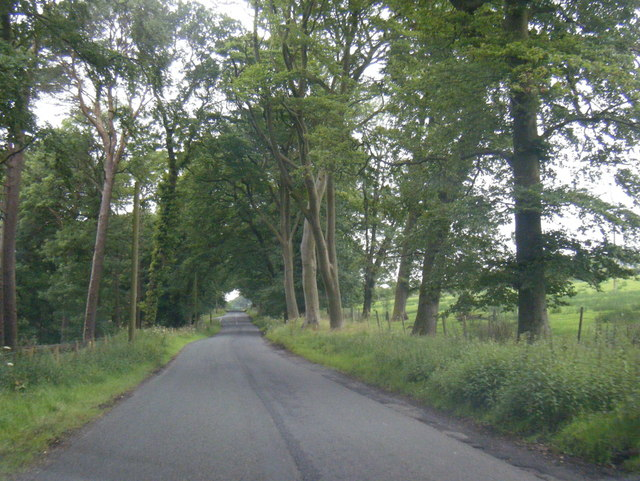 Lane west of Marshaw Farm