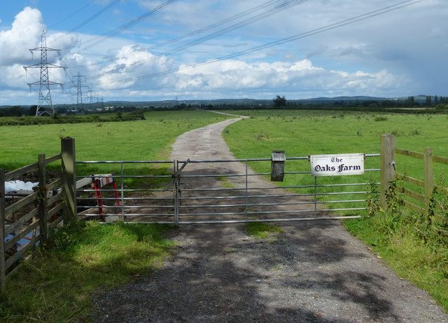 Gate and track leading to the Oaks Farm