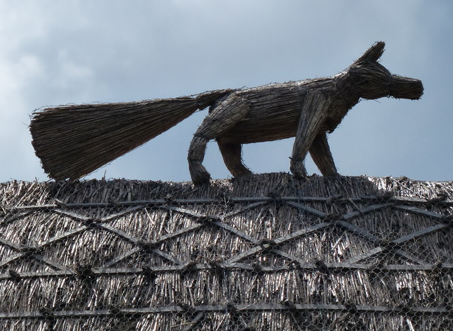 Fox on a thatched roof