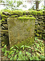 SD6467 : Parish boundary at Mewith by Stephen Craven