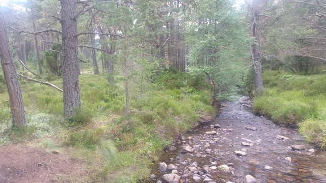 Allt na Feithe Duibhe near Glenmore Lodge