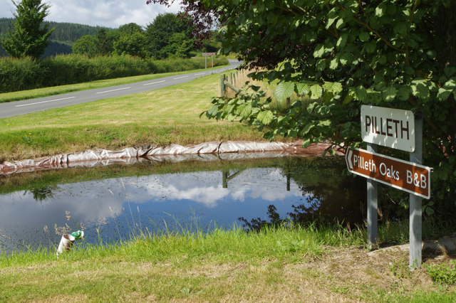 Pond at Pilleth