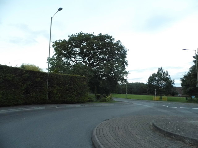 Roundabout on Foxglove Way, Thatcham