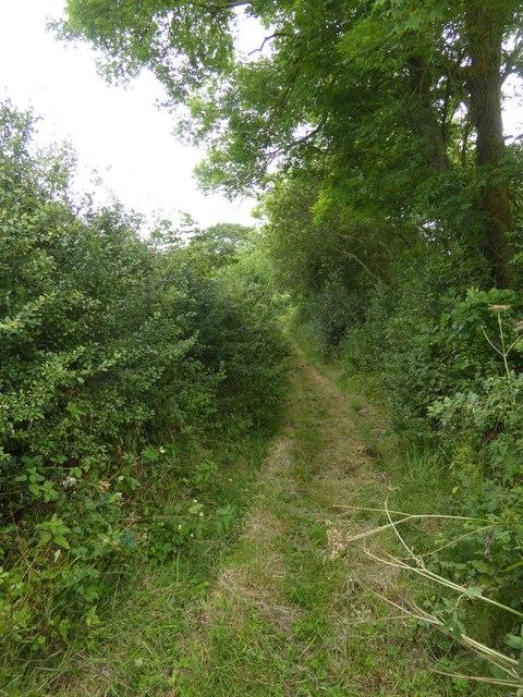 Footpath to Posbury