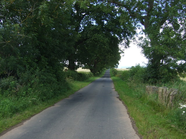 Minor road towards Lintlaw