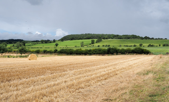 Stubble field with straw bale