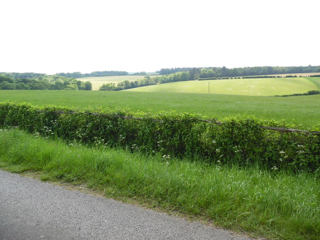 View looking South West from track near Nettlebed, Oxon