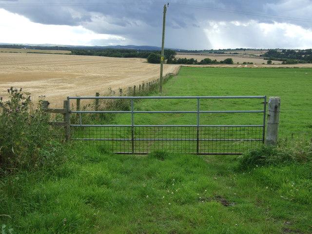 Field entrance, Edington