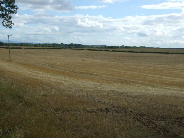 Stubble field, Edington
