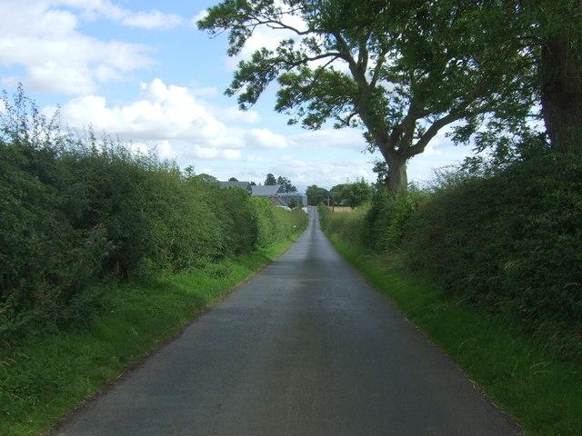 Minor road towards Edington Mill