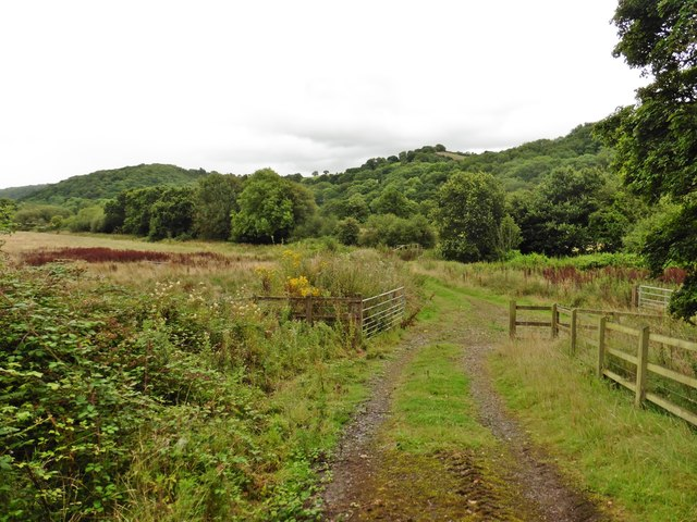 Track to former farm railway crossing at Lower Yearlstone
