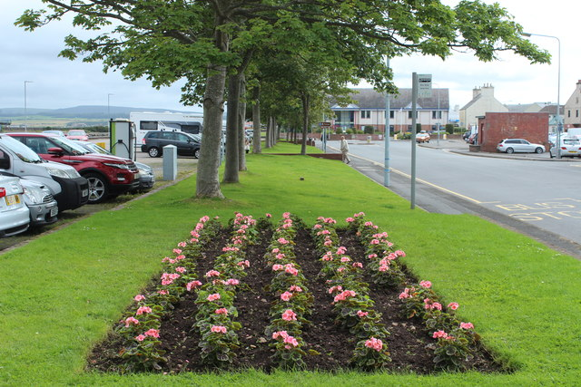 Flower Bed, Stranraer