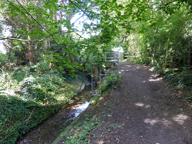 Brook and path, Hockley
