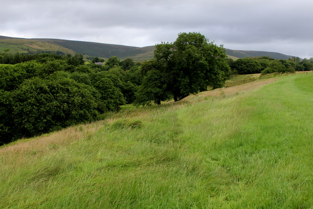 Above Dobson's Brook